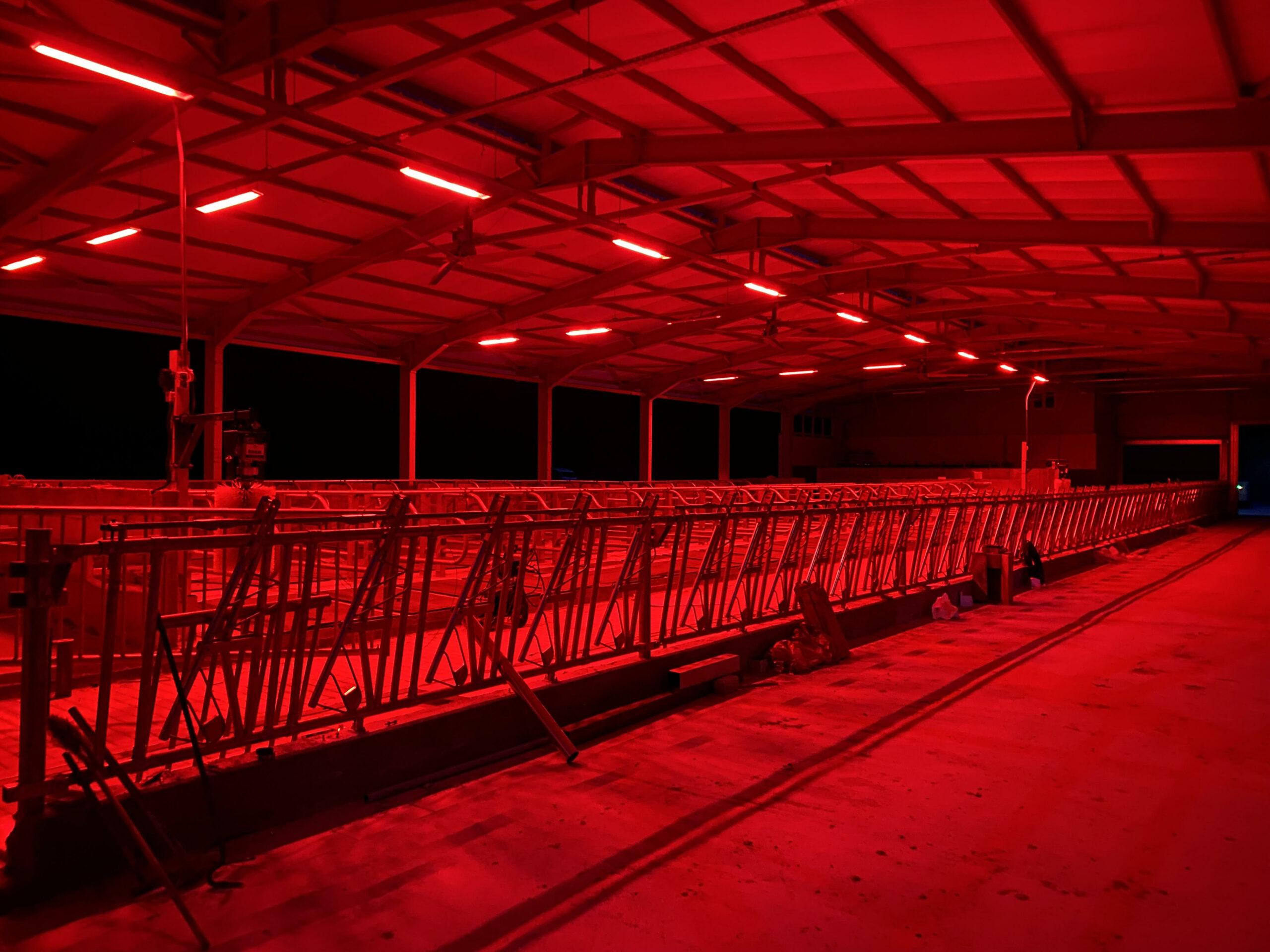 Lighting for Farm Facilities